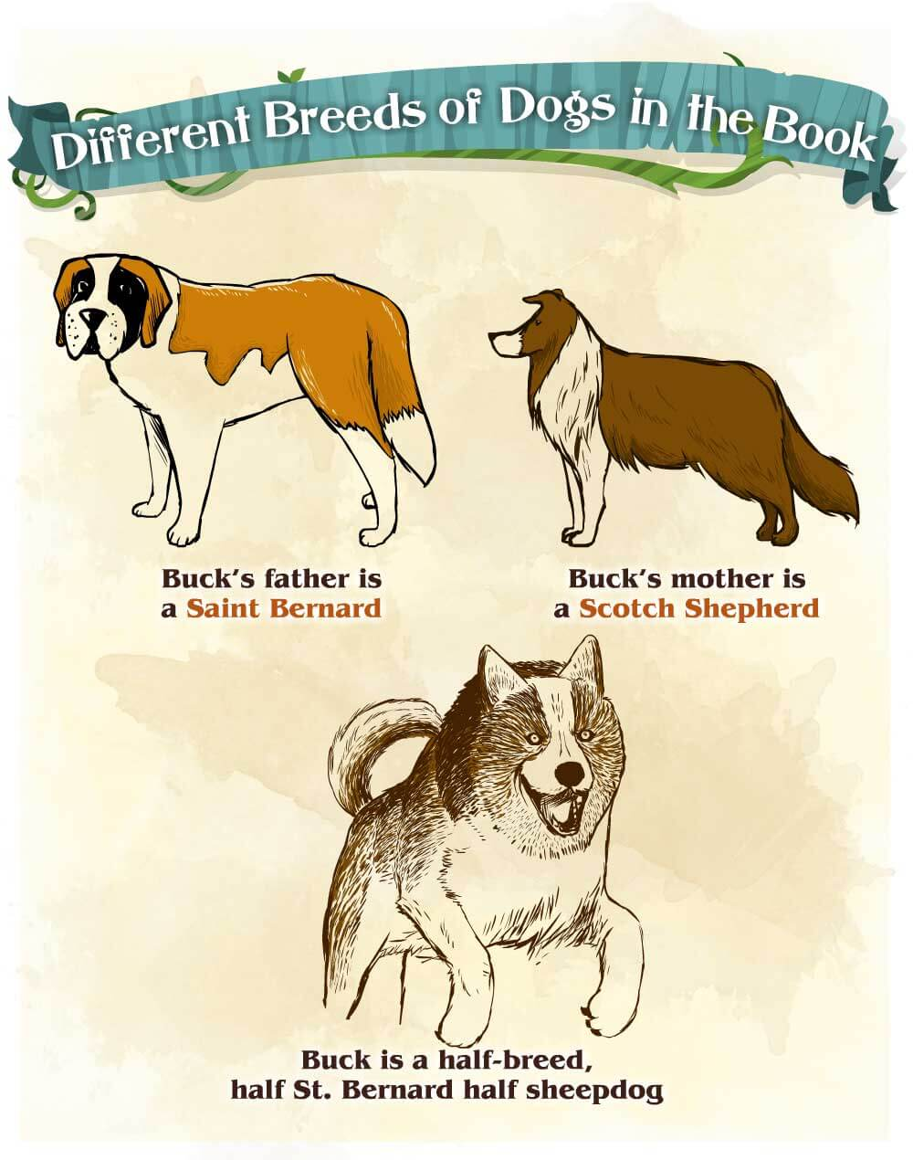 The-Call-of-the-Wild_different_dogs_p1